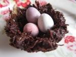 Schokolade Oster Nester (1)