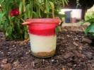 Cheesecake im Glas mit Himbeeren