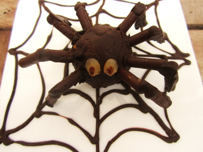 Spinne Cake Pop Halloween (16)