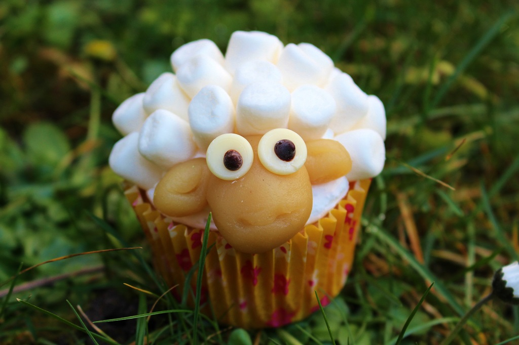 Schaf Sheep Cupcake (80)