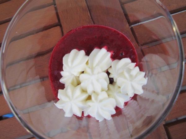 Joghurt mit Früchten (3)