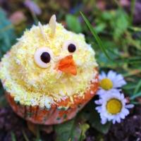 Küken Cupcakes mit Kokos (vegan)